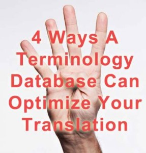 terminology database image